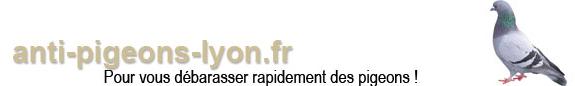 anti-pigeons-lyon.fr